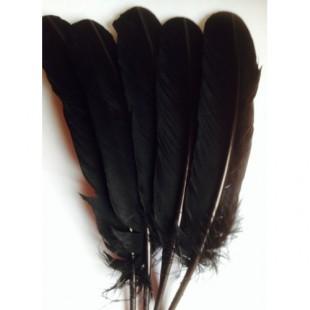 Черный цвет. Гусиное перо 25-30 см