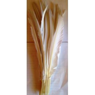 1 шт. Белый цвет. Перья петуха 30-40 см. Цветное