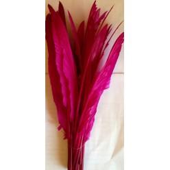 1 шт. Фуксия цвет.  Перья петуха 30-40 см. Цветная
