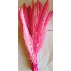 1 шт. Розовый цвет.  Перья петуха 30-40 см. Цветная