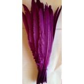 1 шт. Фиолетовый цвет.  Перья петуха  30-40 см. Цветная