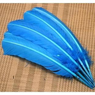 Голубой цвет. Гусиное перо 25-30 см