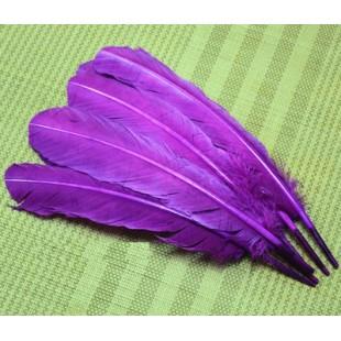 Фиолетовый цвет. Гусиное перо 25-30 см