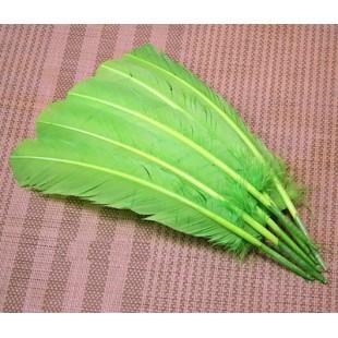 1 шт. Зеленый цвет. Гусиное перо 25-30 см