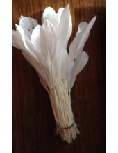 20 шт. Белый цвет.  Кисточка цветная 12-17 см