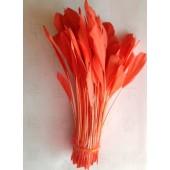 20 шт. Персик  цвет. Перья петуха. Кисточка 12-17 см. Цветная
