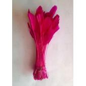 20 шт. Фуксия  цвет. Перья петуха. Кисточка 12-17 см. Цветная