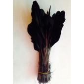 20 шт. Черный цвет. Перья петуха. Кисточка 12-17 см. Цветная