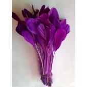 20 шт. Фиолетовый цвет. Перья петуха. Кисточка 12-17 см. Цветная