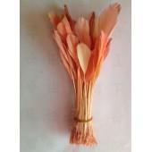 20 шт. Бежевый цвет. Перья петуха. Кисточка 12-17 см. Цветная