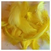 100 шт. Желтый  цвет. Гусиное перо 4-9 см. Плавающее