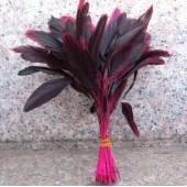 20 шт. Фуксия цвет. Кисточка 10-20 см. 2-х цветное