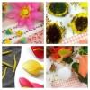 Пестики и тычинки в цветы
