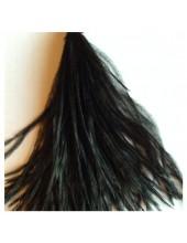 20 шт. Черный цвет. Перо страуса шелк 10-15 см.