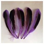 20 шт. Фиолетовый цвет. Перья цветной утки 10-15 см.