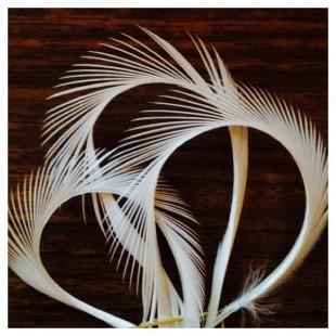 20 шт. Белый цвет. Гусиное перо 13-18 см. Волосок