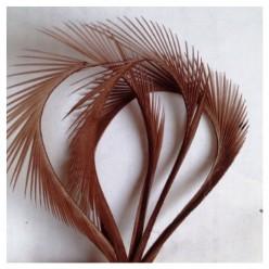 20 шт. Шоколад цвет.  Гусиное перо 13-18 см. Волосок