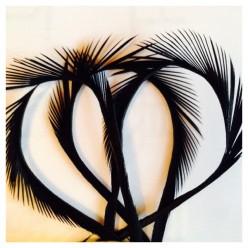 20 шт. Черный цвет. Гусиное перо 13-18 см. Волосок