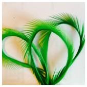 20 шт. Зеленый цвет. Гусиное перо 13-18 см. Волосок