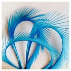 20 шт. Голубой цвет. Гусиное перо 13-18 см. Волосок