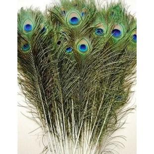1 шт. Перья павлина 70-80 см Глаз 3-5  см