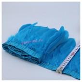 1 м. Голубой цвет. Тесьма. Перья петуха на ленте 14-19 см.