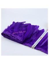 1 м.  Фиолетовый цвет. Тесьма. Перья петуха на ленте 14-19 см.